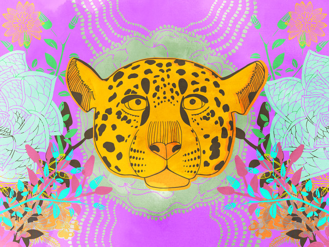 Jaguar - Fineart photography by Catalina Villegas