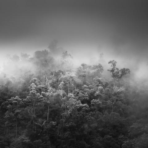 Untouched - Fineart photography by Tillmann Konrad