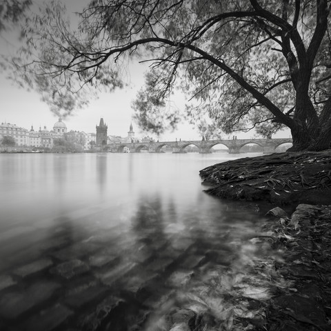 Vltava River Charles bridge Prague - Fineart photography by Ronny Behnert