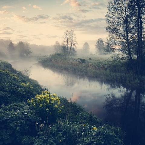 [:] MORNING AT NAREW II [:] - Fineart photography by Franz Sussbauer