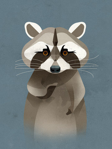 Racoon - Fineart photography by Dieter Braun