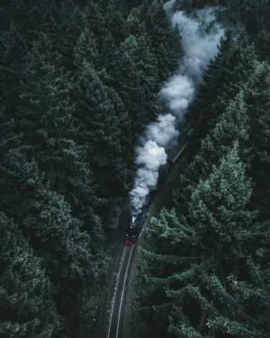 Forest Train - Fineart photography by Luca Jaenichen