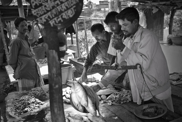 Merchants weigh fish at the market, Bangaldesh - Fineart photography by Jakob Berr
