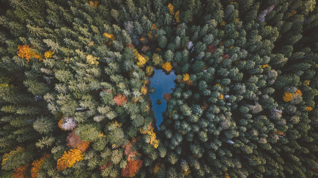 Heart of Autumn - Fineart photography by Johannes Hulsch