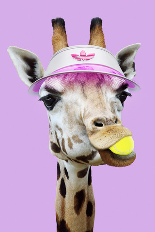 Tennis Giraffe - Fineart photography by Jonas Loose