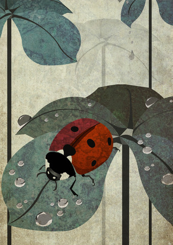 ladybug - Fineart photography by Sabrina Ziegenhorn