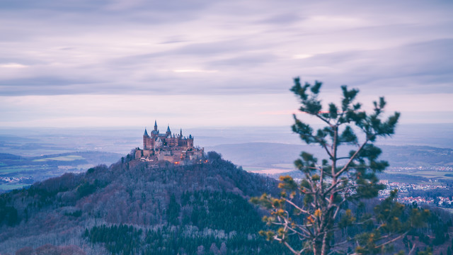 Castle and pine tree: Hohenzollern Castle - Fineart photography by Eva Stadler