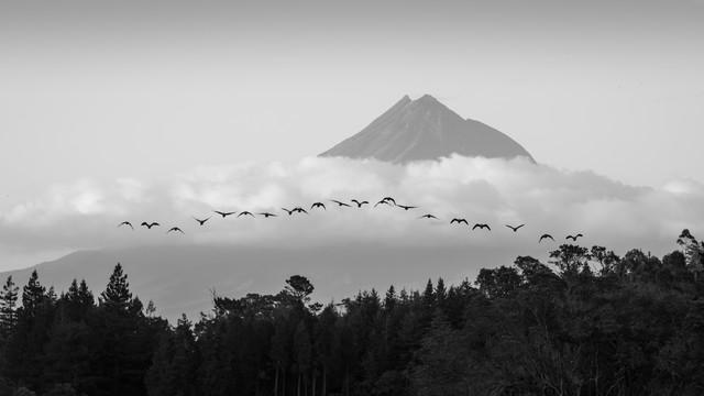 MOUNT TARANAKI - Fineart photography by Christian Janik