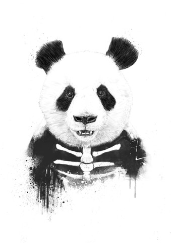 Zombie panda - Fineart photography by Balazs Solti