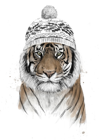 Siberian tiger - Fineart photography by Balazs Solti