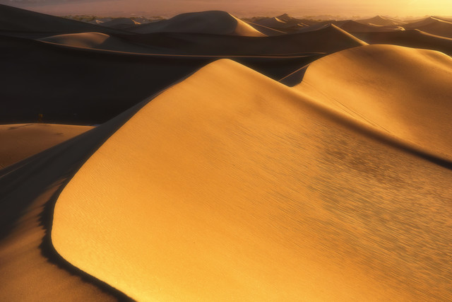 Golden Dunes - Fineart photography by Martin Morgenweck