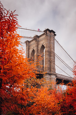 Red Fall in Brooklyn - Fineart photography by Christian Seidenberg