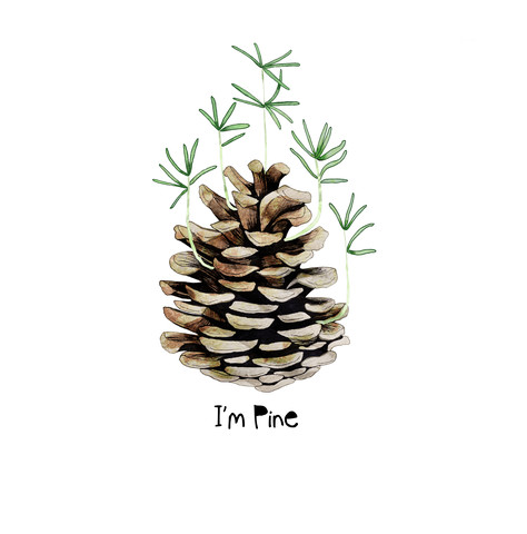 I'm Pine - Fineart photography by Katherine Blower