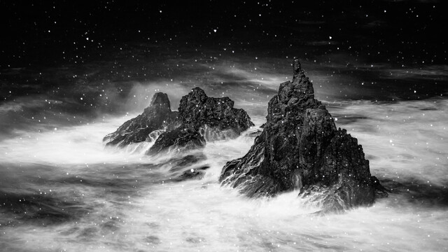 resist the storm - Fineart photography by Anke Butawitsch