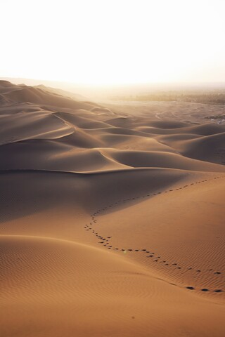 Lost in desert - Fineart photography by Christian Hartmann