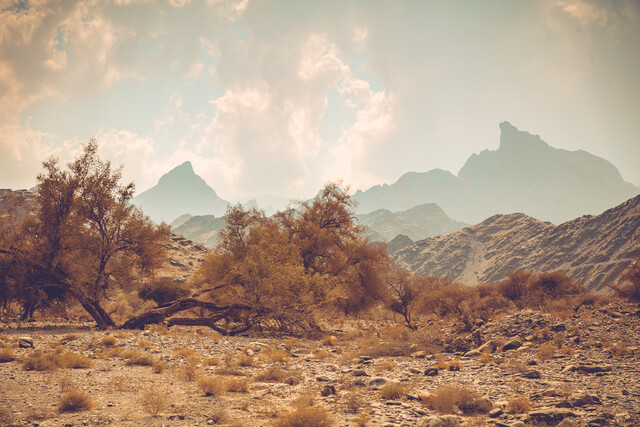 Dry valley and mountain ridge - Fineart photography by Franz Sussbauer