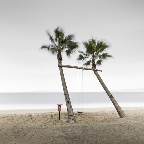 Palm tree swing - Fineart photography by Ronny Behnert