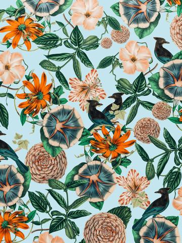 Forest Birds - Fineart photography by Uma Gokhale