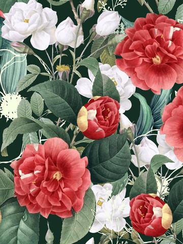 Botanical Wonder - Fineart photography by Uma Gokhale