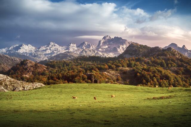 Asturias Picos de Europa Massif with pasture - Fineart photography by Jean Claude Castor