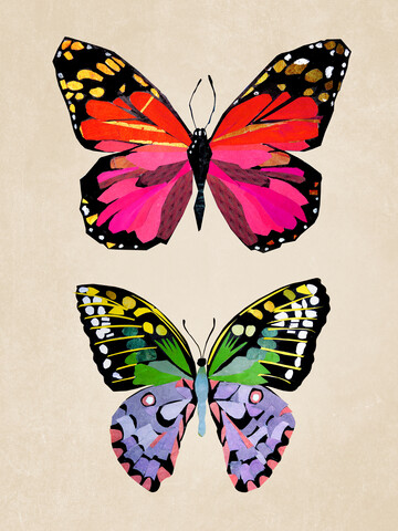 Butterflies – Illustration for Children - Fineart photography by Pia Kolle