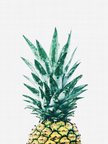 Pineapple No1 - Fineart photography by Vivid Atelier