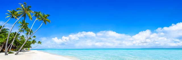 Beach panorama with palm trees on Bora Bora - Fineart photography by Jan Becke