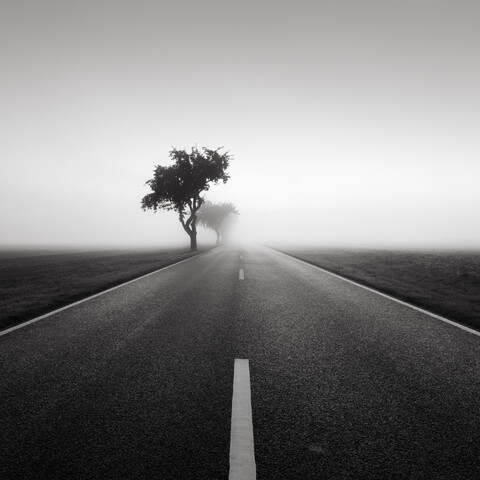 Road to nowhere 2 - Fineart photography by Thomas Wegner