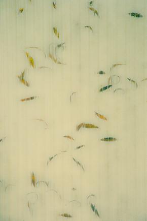 Erwin Fischer, Autumn (Germany, Europe)
