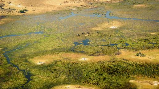 Dennis Wehrmann, Bird`s eye view Okavango Delta Botswana (Botswana, Africa)