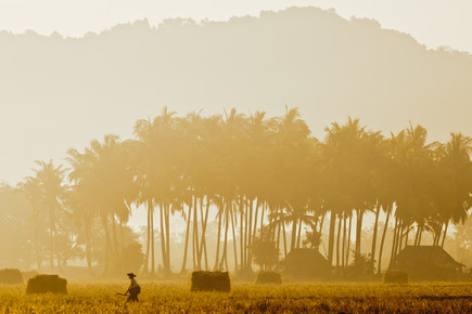 Marc Rasmus, Golden Walk (Myanmar, Asia)