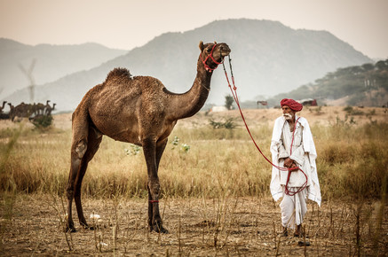 Jens Benninghofen, At the Camel Fair (India, Asia)