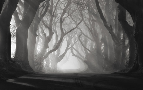 Carsten Meyerdierks, Rays Of Light (United Kingdom, Europe)