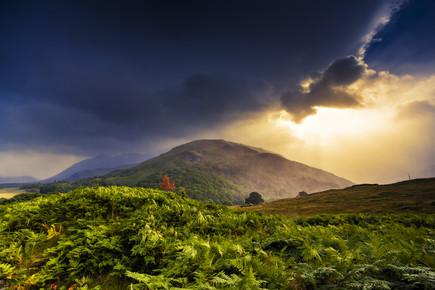 Philip Gunkel, Highland Fairy Tale VI (United Kingdom, Europe)