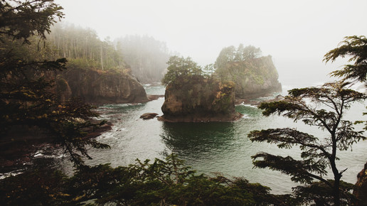 Kevin Russ, Cape Flattery (United States, North America)