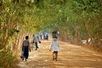 Walter Luttenberger, die allee (Myanmar, Asia)