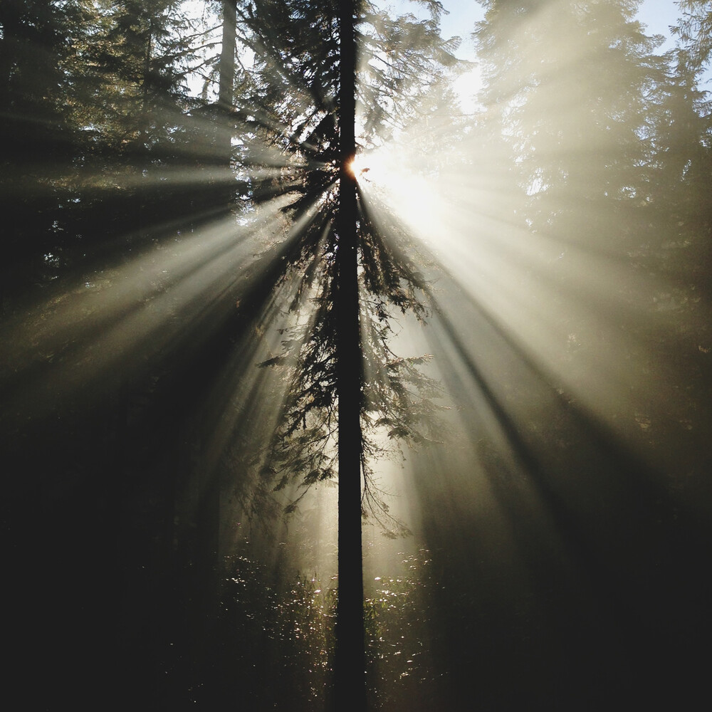 Umpqua Rays - fotokunst von Kevin Russ