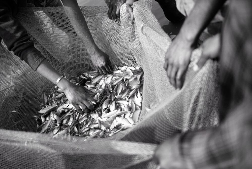 Fishermen evaluate their catch - Fineart photography by Jakob Berr