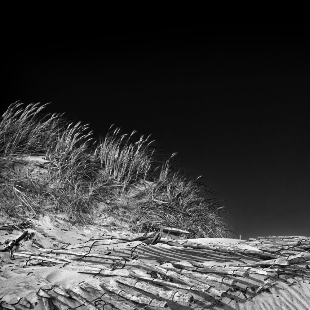 düne I - Fineart photography by Michael Schulz-dostal