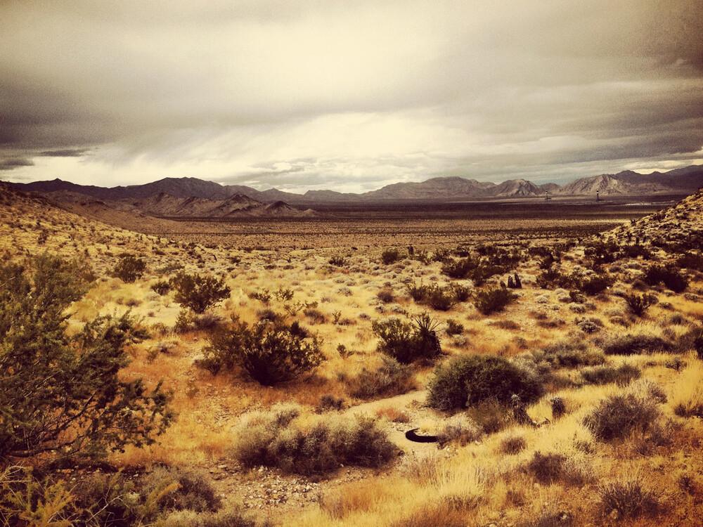 Desert #8 - fotokunst von Michael Brandone