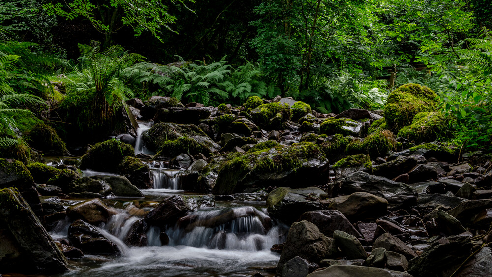 the stream - Fineart photography by Marc Fassbender