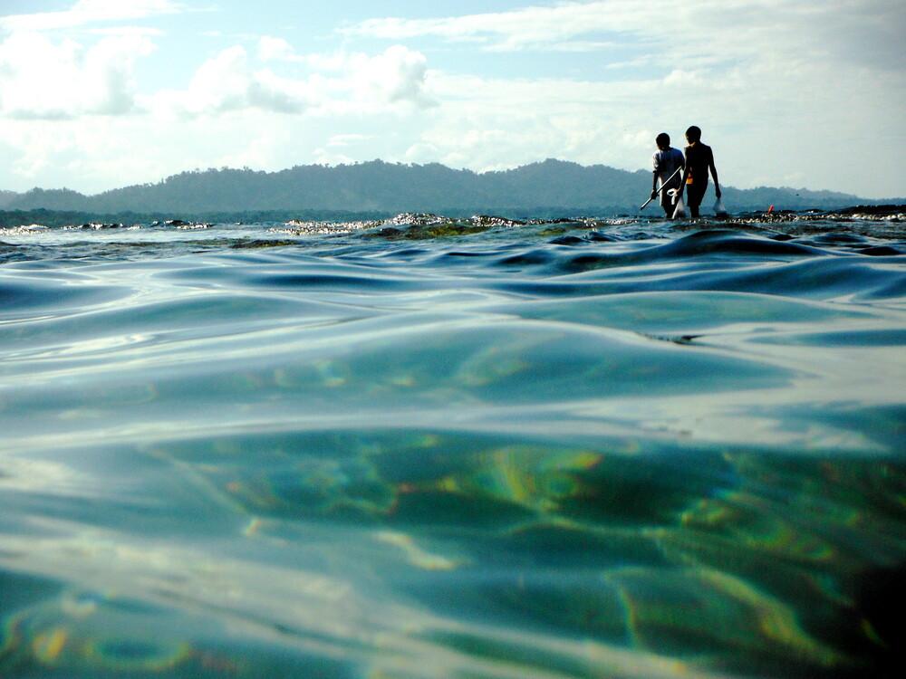 Hunting octopus in Puerto Viejo - fotokunst von Marisa Pettit