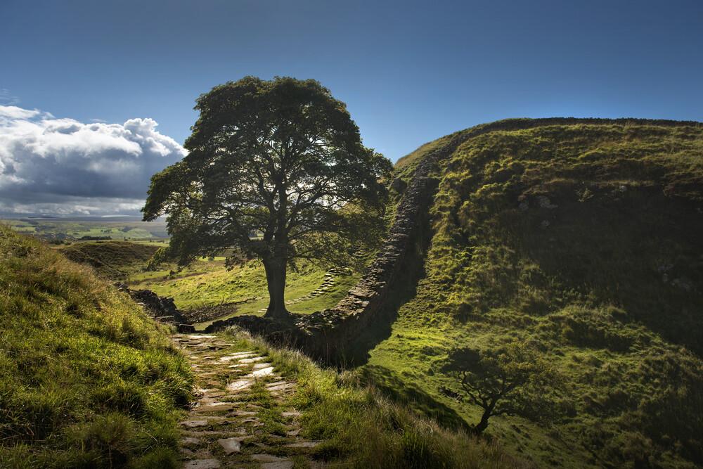 Sycamore Gap, Hadrian's Wall - fotokunst von Steve Clements