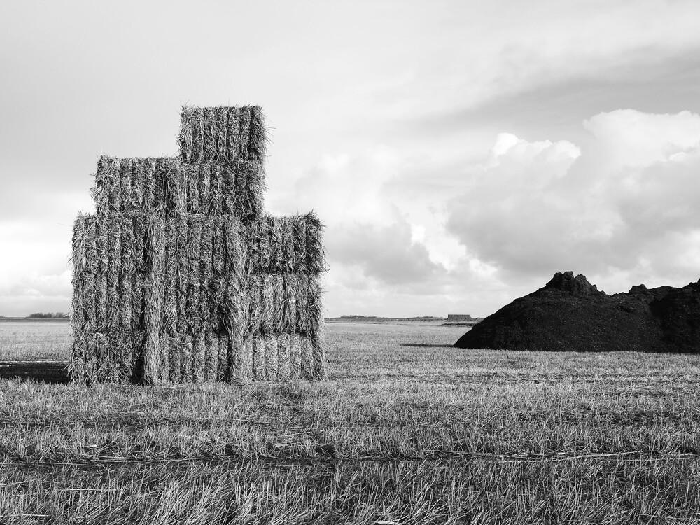 hay - fotokunst von Kay Block