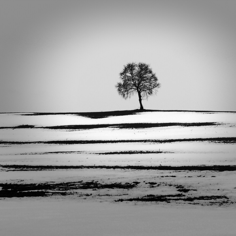 Winter in Oberschwaben - Fineart photography by Ernst Pini
