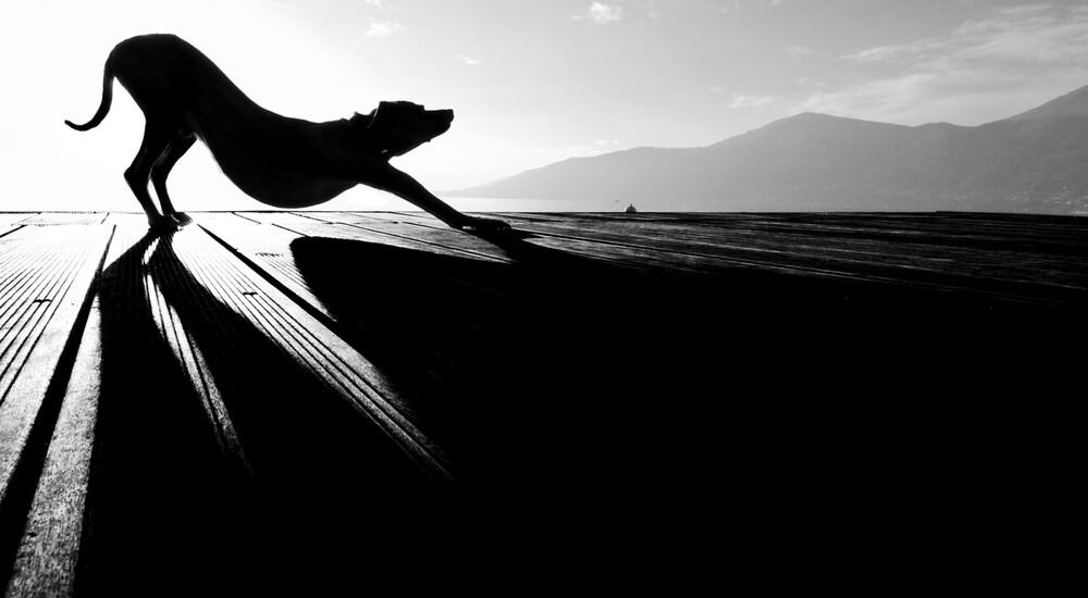 sun salutation - fotokunst von Christine Frick