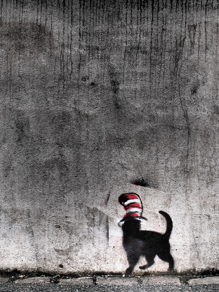 cat with hat - Fineart photography by Kay Block
