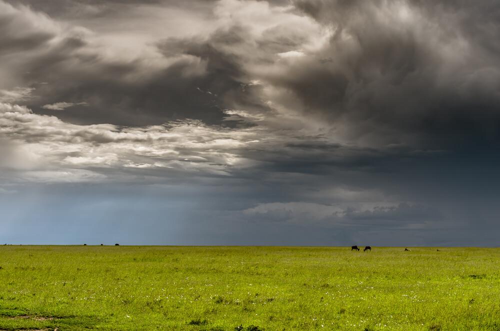 Masai Mara – Sonne, Regen, Wolken - fotokunst von Ralf Germer