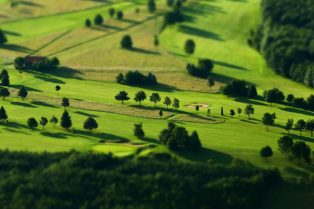 trees - Fineart photography by Jochen Fischer