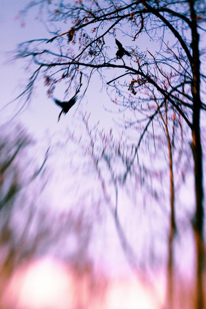 Spell - Fineart photography by Valentyn Kolesnyk